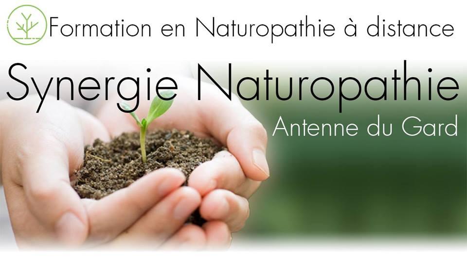 Synergie naturopathie 2
